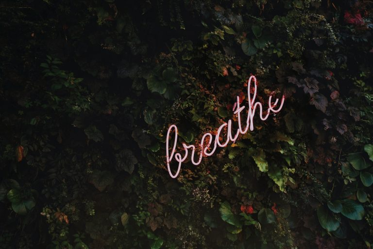 …breathe!For a full size digital copy (6000x4000px RAW+JPG) of this file, or a high quality print, please contact me via instagram: @timothy.j.goedhart, or email: tim@goedhart-lin.nlThat file would be free to use for any means except direct reselling (copywrite is included in metadata).When using this free image online: please tag, credit and if you want, follow me on Instagram.
